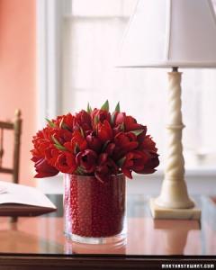 a100134_0204_tulip02_xl