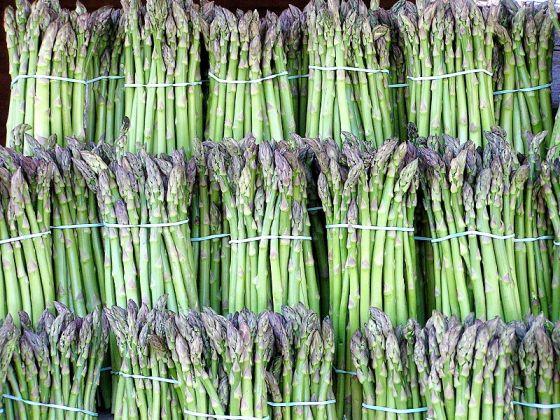 800px-Asparagus_image