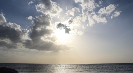 2012_03 - Florida 189a